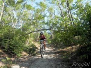 viagginbici a Lipari