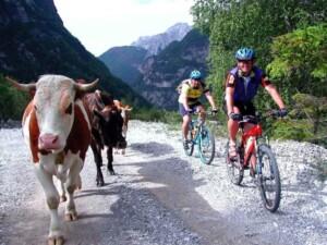 friuli in bicicletta