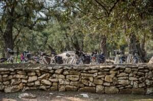 bicicletta salento