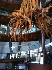 museo bimbi barcellona