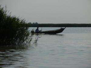 barchino lungo delta po