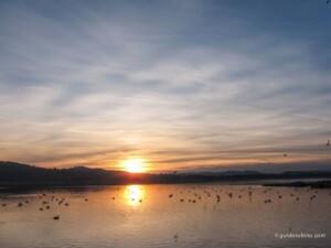 territorio lago maggiore