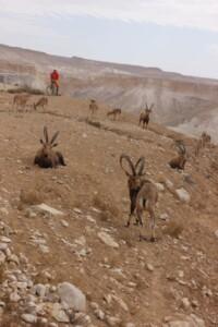 viaggi in bici in israele