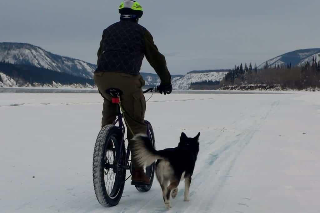 Volete provare una fatbike ecco i prossimi appuntamenti for Bicicletta per tre persone