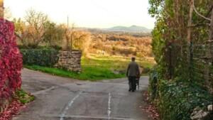 Pliskovica - in paese