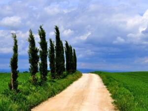 strada Monteroni d'Arbia