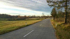 sulla strada tra Sesana e Pliskovica (4)
