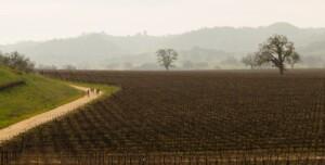 L'Eroica in California (foto di John Watson)