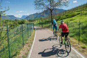 pedalare  sulla strada del vino di bolzano