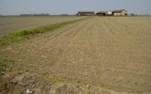 abbiamo pedalato tra campi di riso per tre giorni!