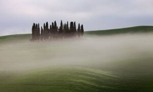 THE FRANCIGENA: FROM SIENA TO ST.QUIRICO D'ORCIA