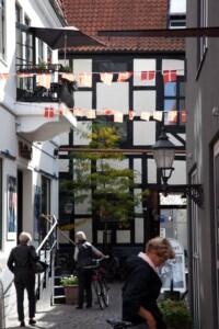 Street in Odense_Press 300dpi_1