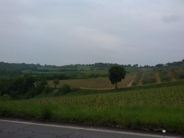 Strada per Montepulciano