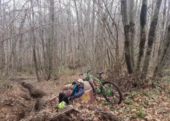 riposo nei boschi