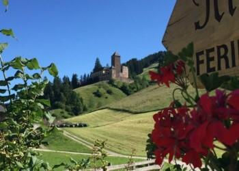 castello in lontananza con fiori rossi in primo piano